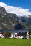 Norwegian village. Photo of Undredal, a little Norwegian village on the Sognefjord, Norway Royalty Free Stock Images