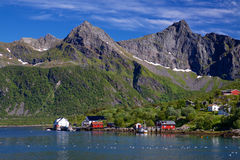 Norwegian village Royalty Free Stock Image