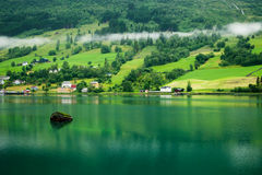Norwegian village near fjord. Norwegian village on a fjord coast Royalty Free Stock Photo