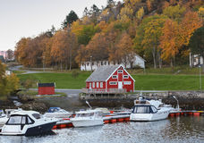 Norwegian village on the sea coast Stock Photography