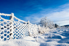 Norwegian winter. Frost on a fence in rural winter landscape in norway Royalty Free Stock Photo