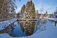 Norwegian winter landscape. Snow-laden trees in the forest by Brekke in Halden Royalty Free Stock Images