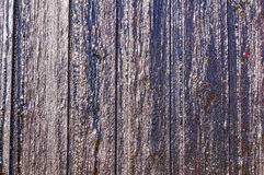 Norwegian wood elements with the resin Royalty Free Stock Photo