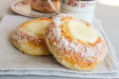 Norwegian buns-Skoleboller. These are Norwegian yeast rolls with baked custard, icing sugar and coconut flakes stock images