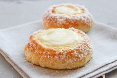 Norwegian buns-Skoleboller. These are Norwegian yeast rolls with baked custard, icing sugar and coconut flakes royalty free stock photo