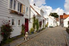 Norwegische Architektur Stockbild