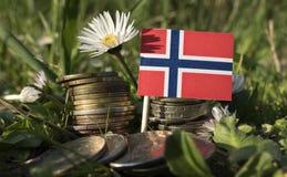 Norwegische Flagge mit Stapel Geld prägt mit Gras Lizenzfreies Stockbild