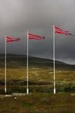 Norwegische Markierungsfahnen Stockbilder