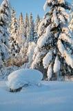Norwegischer Winter Stockfoto