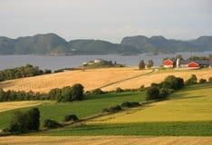 Norwegisches Ackerland Stockfotos