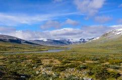 Norwegisches feldmark im Nationalpark Jotunheimen lizenzfreie stockbilder