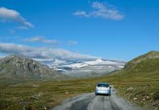 Norwegisches fjaeldmark im Nationalpark Jotunheimen stockbild