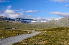 Norwegisches fjaeldmark im Nationalpark Jotunheimen lizenzfreies stockfoto
