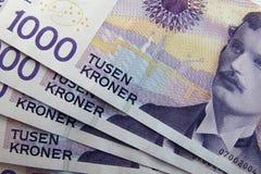 Norwegisches Geld Lizenzfreies Stockbild