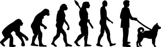 Norwegu Elkhound ewolucja ilustracji