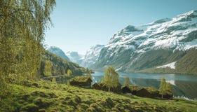 Norwegu krajobraz obrazy royalty free