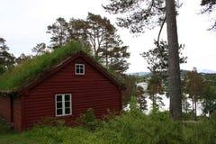 Norwegu krajobraz Obraz Stock