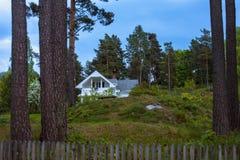 Norwegu krajobraz z drzewami i osamotnionym domem Fotografia Stock