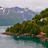 norweigian fjord Arkivfoto