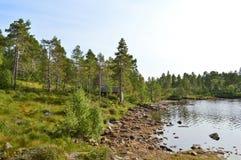 Norweska wieś Fotografia Stock