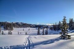 norweska zima Zdjęcia Royalty Free