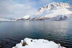 Norweski fjord otaczający śnieżnymi górami Obrazy Stock