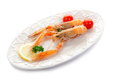 Norwey lobster Royalty Free Stock Photo