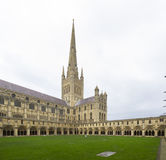 Norwich Cathedral, Norfolk, England. Royalty Free Stock Photo