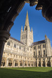 Norwich Cathedral. A view from inside the cloisters of Norwich Cathedral in Norwich, UK Royalty Free Stock Photo