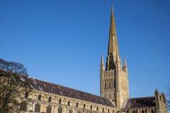 Norwich domkyrka Fotografering för Bildbyråer