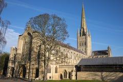 Norwich domkyrka Arkivbild