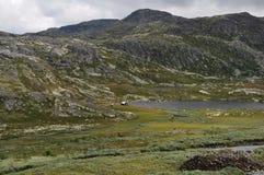 Norwich Mountains. Near Tuddal,Norway Stock Photo