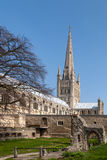 NORWICH, NORFOLK/UK - KWIECIEŃ 24: Widok katedra w Norwic Zdjęcia Stock