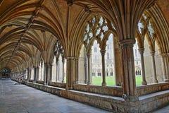 NORWICH UK - JUNI 5, 2017: Kloster i den Norwich domkyrkan med detaljer av valven och kolonnerna arkivbilder
