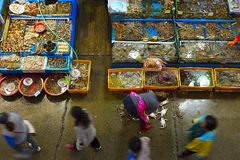 Noryangjin Fisheries Wholesale Market interior Royalty Free Stock Photo