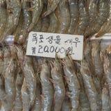 Noryangjin rybołówstw Hurtowy rynek 24 godzina rynku ove Zdjęcia Stock