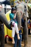 Nos elefantes mostre o elevador amedrontado da menina no tronco do elefante Fotos de Stock Royalty Free