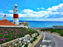 Nos penhascos de Gibraltar Foto de Stock Royalty Free