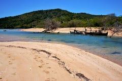 Nosaty jest cieśni wyspy łodzi palmą Zdjęcie Stock