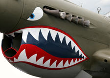 Nose Art Royalty Free Stock Photos