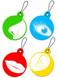 Nose, eye, mouth and ear pictogram tags collection Royalty Free Stock Image