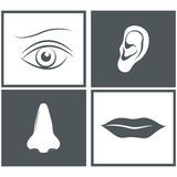 Nose, eye, mouth and ear pictograms Stock Photos