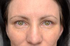 Nose and eyes of a green-eyed woman. With dark brown hair staring directly into the lens in a close up cropped view of her face stock image