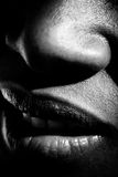 Nose mouth shadows. Extreme closeup of a woman's nose and mouth Royalty Free Stock Image