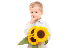 Nose picker. Adorable 3-4 years old boy with sunflowers isolated on white Stock Image
