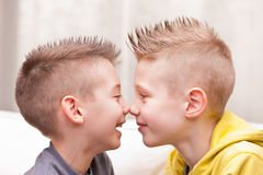 Nose to nose little friends or brothers Stock Photo