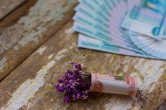 Nosegay. Bouquet of flowers wrapped in a dollar bill stock image