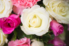 Nosegay. Photo closeup bouquet of roses wedding royalty free stock images
