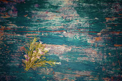 Nosegay of rosemary on blue background. Small nosegay of rosemary on blue wooden background with space for message or photo stock image