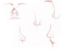 Noses Royalty Free Stock Photo